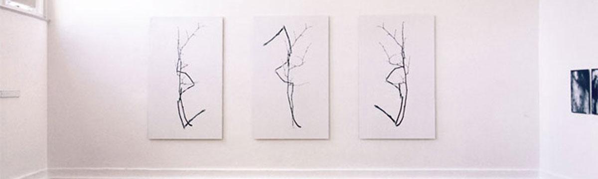 Hans-Martin Asch: Überlagerung 2 Äste – 3 Phasen, dreiteilig