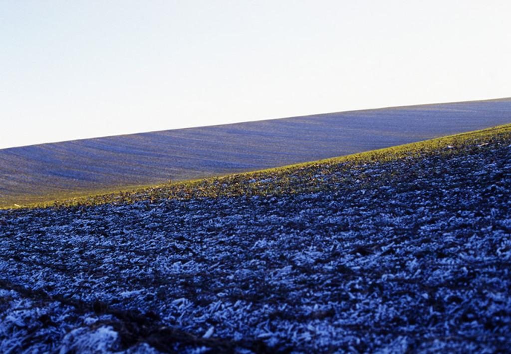 Hoffmann: Eifel-Feld blau