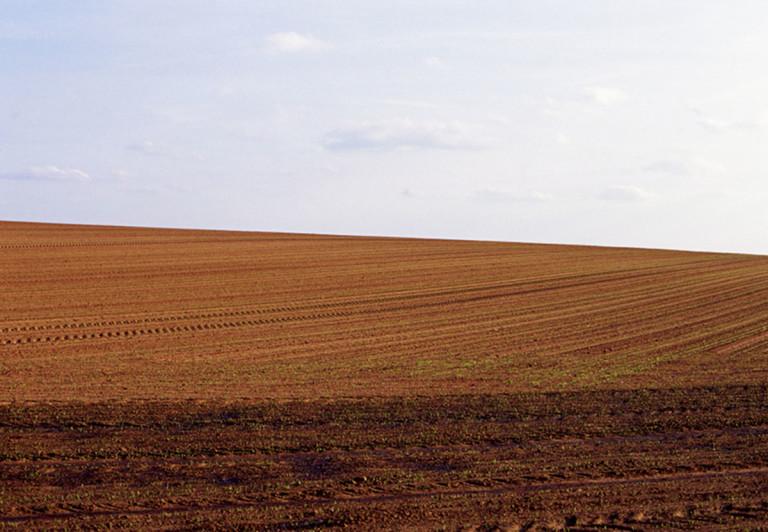 Hoffmann: Eifel-Feld braun