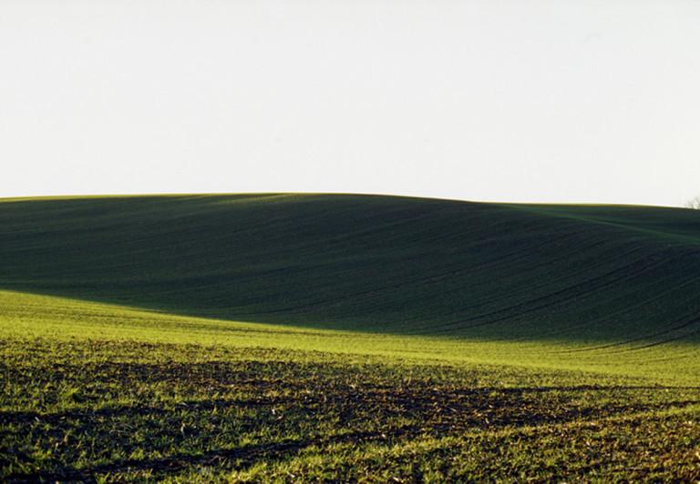 Hoffmann: Eifel-Feld grün