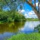 Im Fluss ein